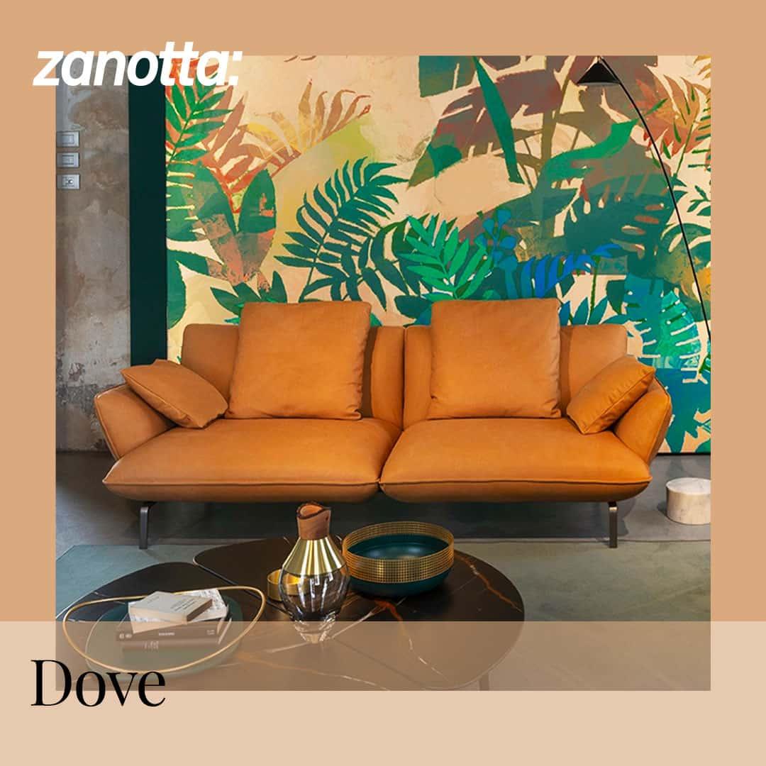 Rivenditore Zanotta Bari - Dove
